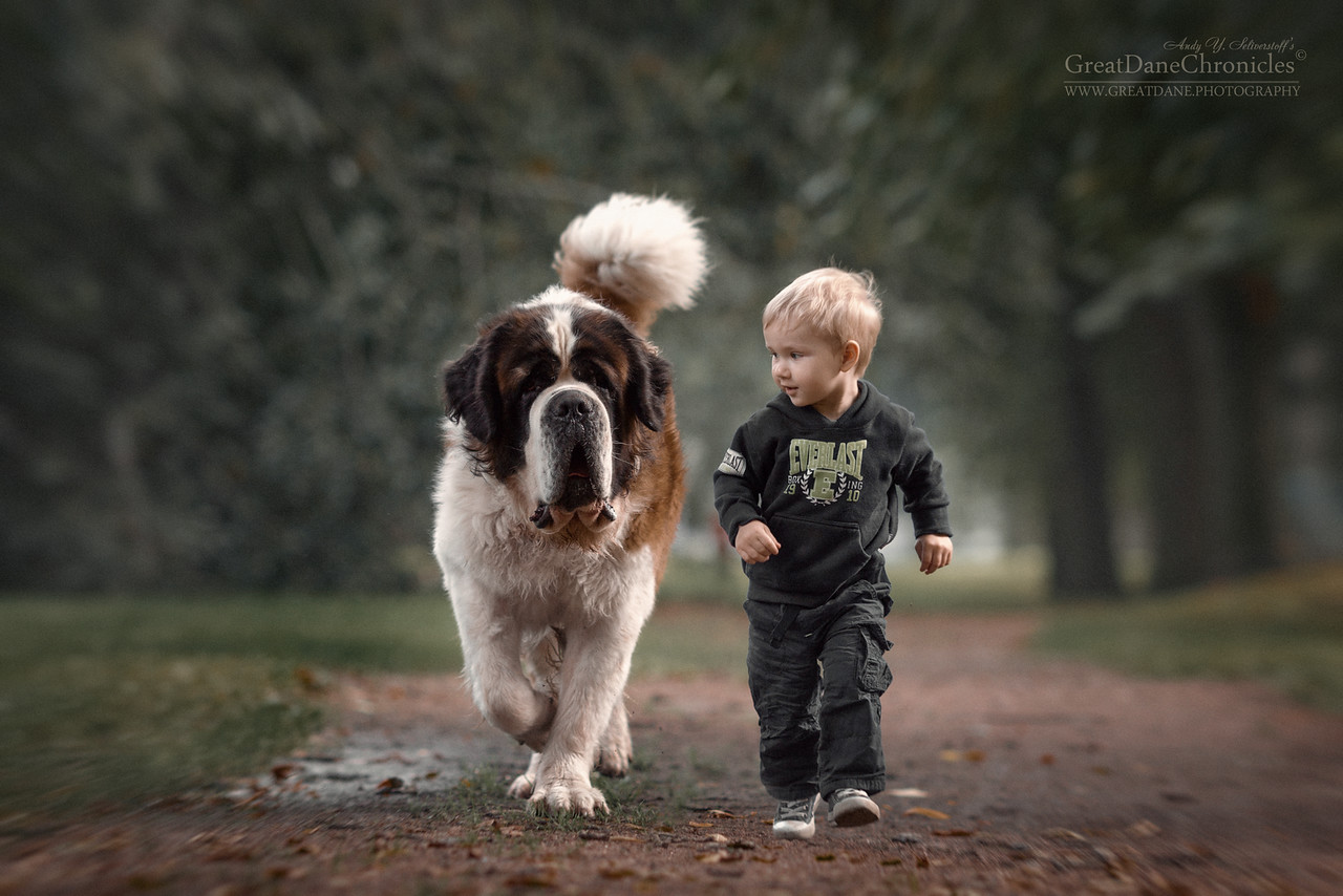 kids-and-big-dogs-12