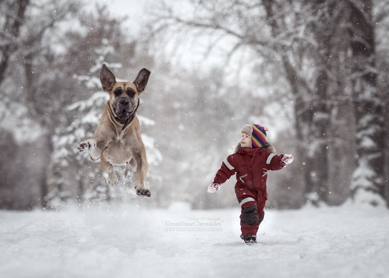 kids-and-big-dogs-14