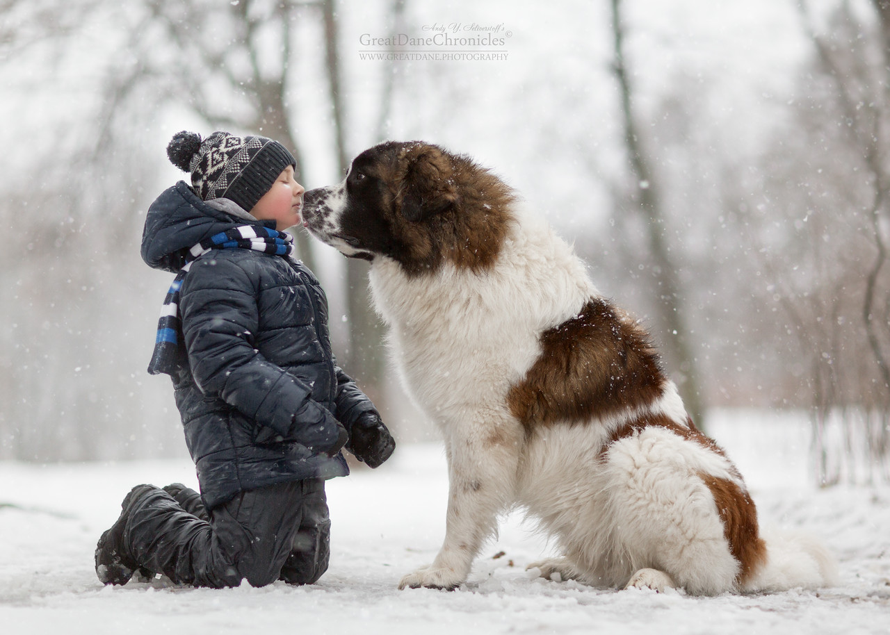 kids-and-big-dogs-16