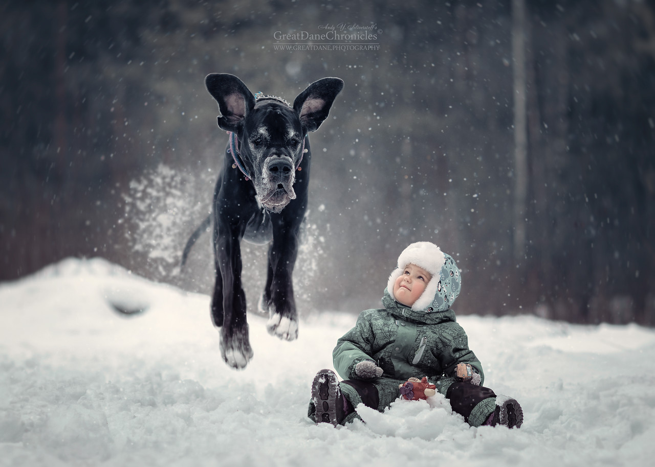 kids-and-big-dogs-3