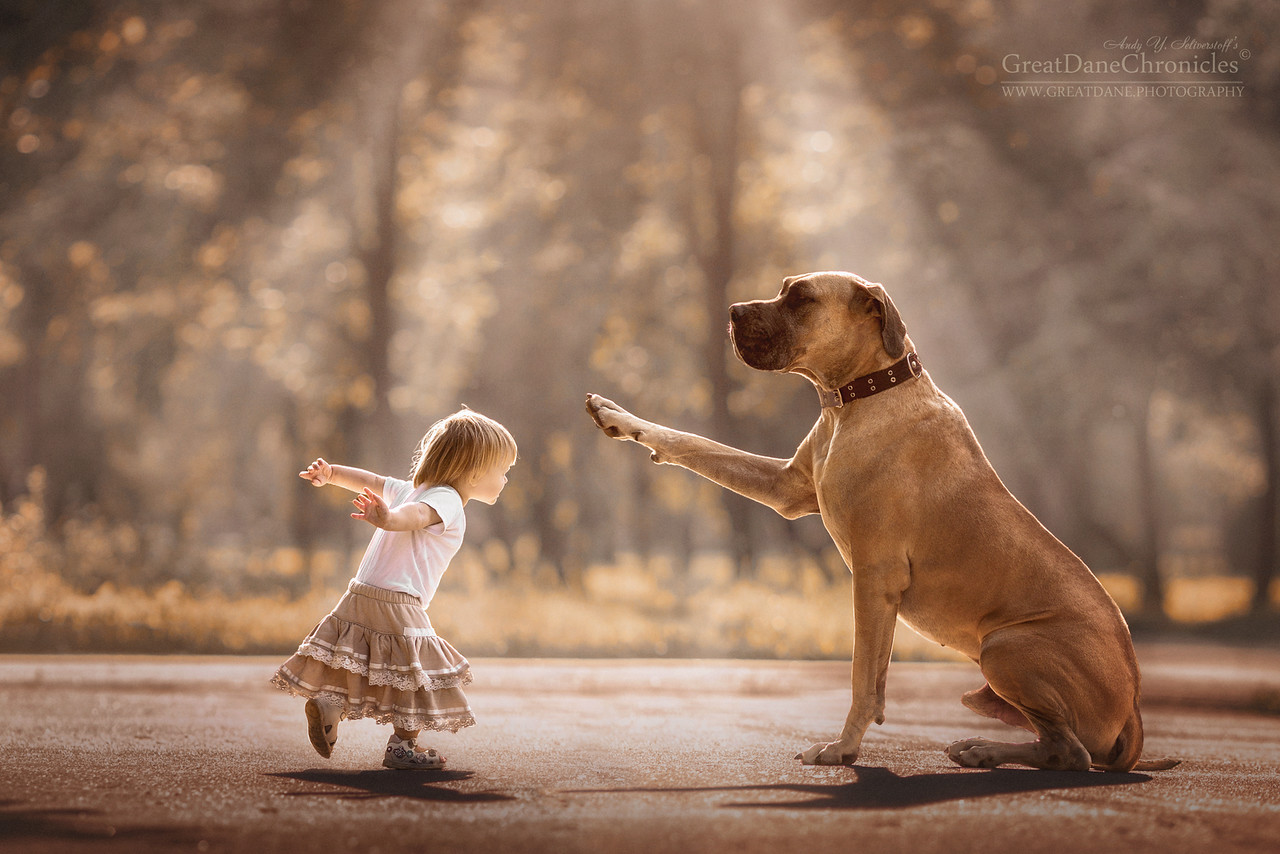 kids-and-big-dogs-9