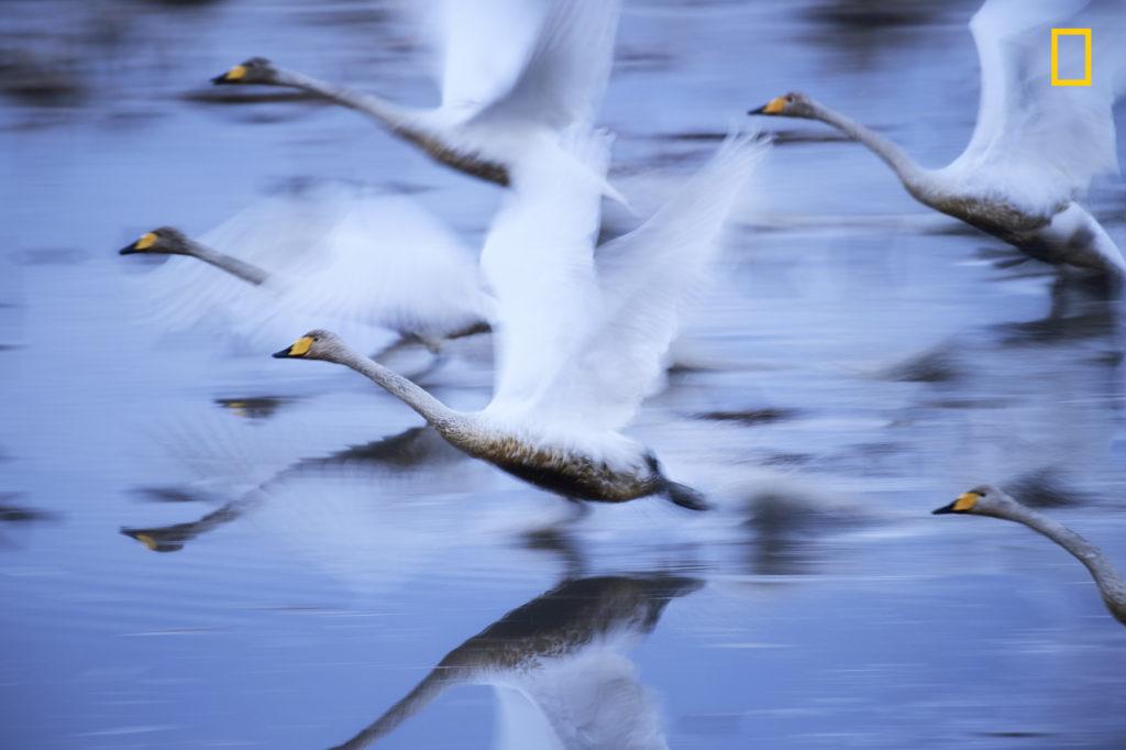 Fotografía realizada por Hiromi Kano, galardonado en el National Geographic Travel Photographer of the year