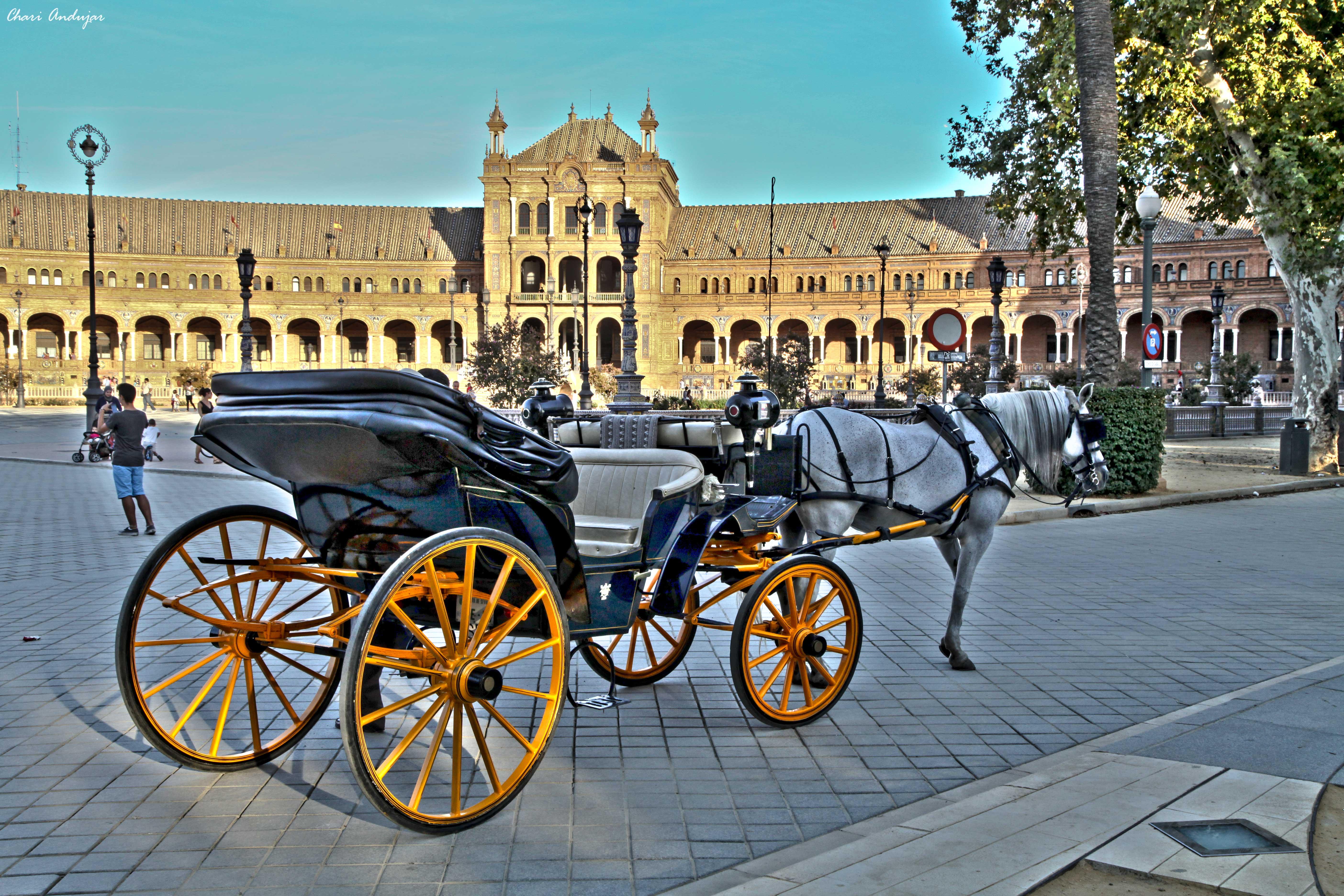 Chari Andujar Plaza Espa A De Sevilla 3877